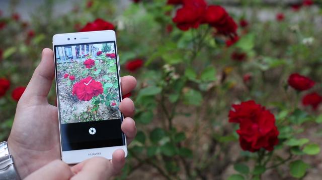 5 saveta za najbolju fotografiju načinjenu pomoću pametnih telefona! (VIDEO)