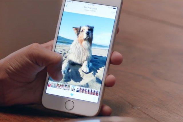 Kako konvertovati Live Photos u GIF fotografije na iPhone 6s ili iPhone 6s Plus?